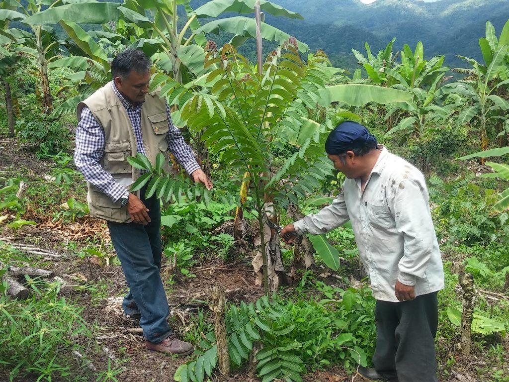 RDS-Peru-Landwirt
