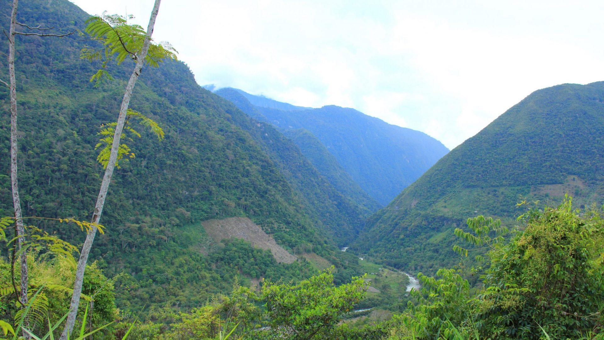 Chanchamayo-Tal Peru